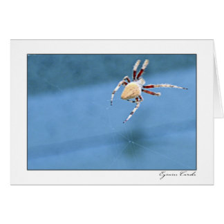 Red Leg Spider Greeting Card