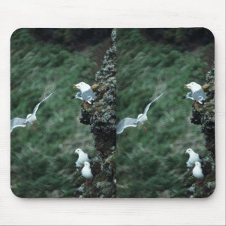 Red-legged Kittiwake Colony Mouse Pads
