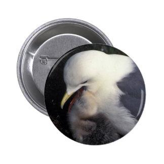 Red-legged Kittiwake Feeding Young Pinback Buttons