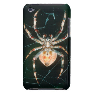 Red-Legged Orb-Web Spider iPod Case-Mate Cases