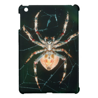 Red-Legged Orb-Web Spider Case For The iPad Mini