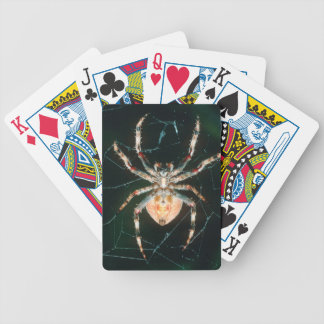 Red-Legged Orb-Web Spider Bicycle Playing Cards