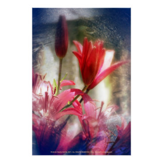 red lilies print