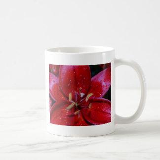 Red Lily After Rainfall Coffee Mug