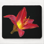 Red Lily Mouse Pad