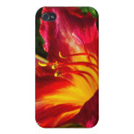 Red Lily Photograph Cases For iPhone 4