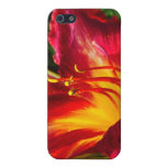 Red Lily Photograph iPhone 5 Case