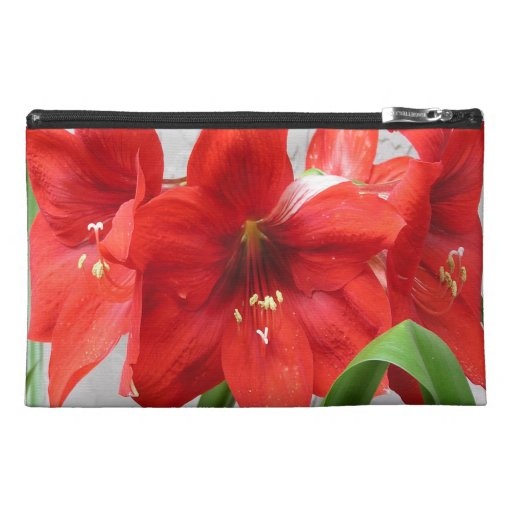 Red Lion Amaryllis cosmetic bag in 3 sizes