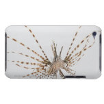 Red lionfish (Pterois volitans) iPod Touch Cover