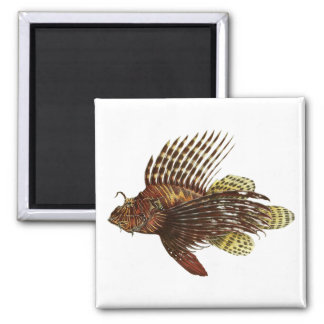 Red Lionfish Vintage Print Magnet