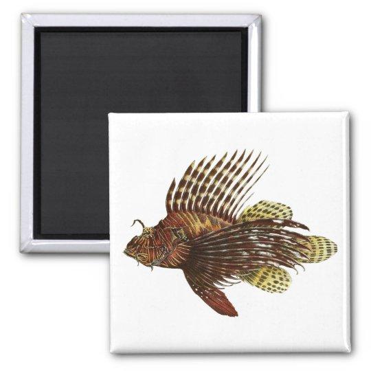 Red Lionfish Vintage Print Magnet