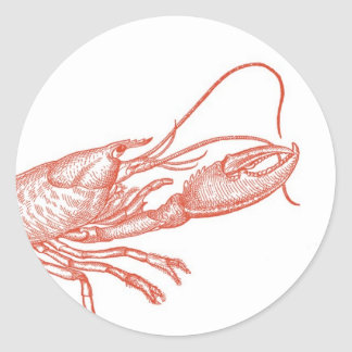Red Lobster Sticker