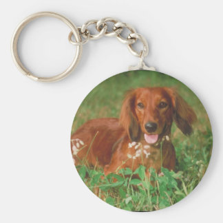 Red Long Haired Dachshund Keychain