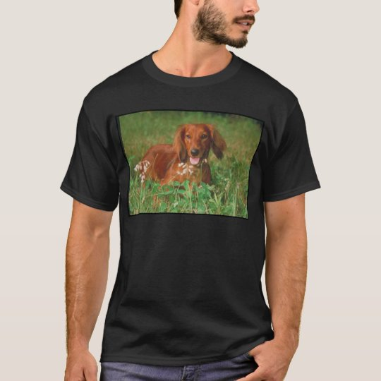 Red Long Haired Dachshund T-Shirt