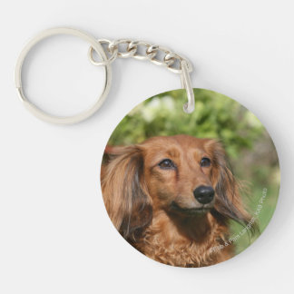 Red Long-haired Miniature Dachshund Double-Sided Round Acrylic Keychain