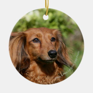 Red Long-haired Miniature Dachshund Christmas Ornaments