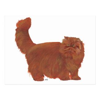 Red Longhair Persian Cat Postcard