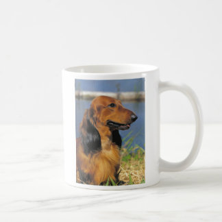 red longhaired dachshund mug