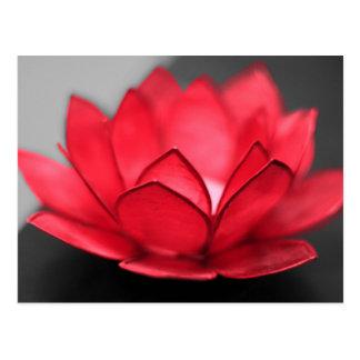 Red Lotus Postcard