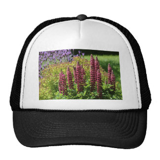 Red lupin flowers trucker hat