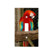 Red Macaw Parrot Light Switch Cover
