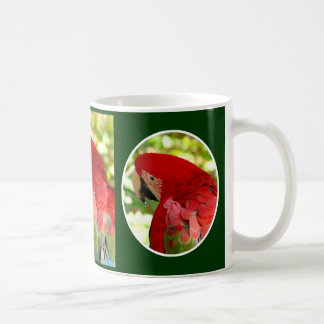 Red Macaw Parrot Mug