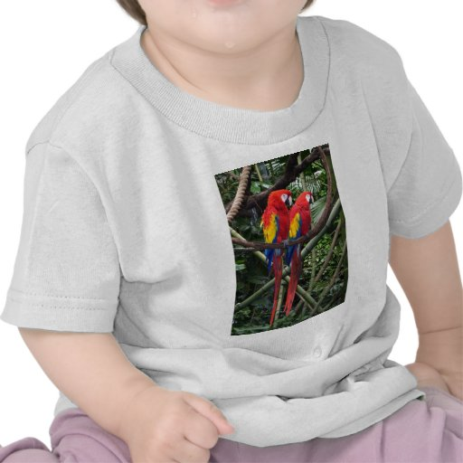 red macaws t shirt