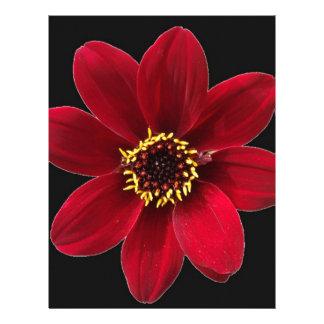 Red Macro Flower Customized Letterhead