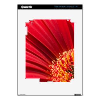 Red Macro Gerbera Daisy Flower iPad 3 Decal
