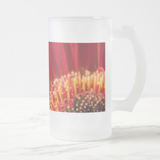 Red Macro Gerbera Daisy Flower 16 Oz Frosted Glass Beer Mug