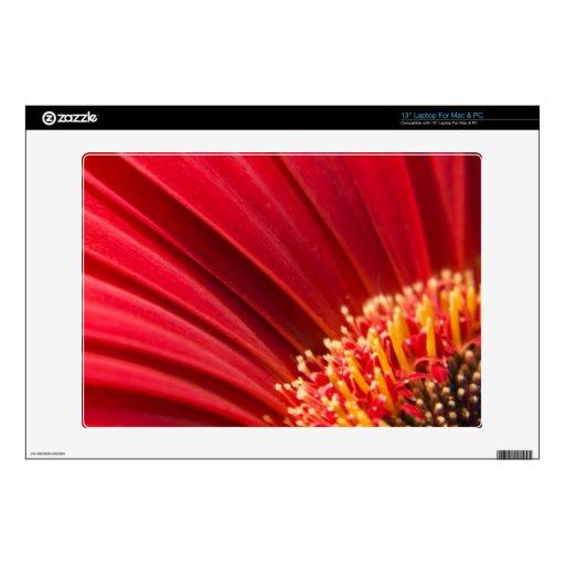 """Red Macro Gerbera Daisy Flower Skins For 13"""" Laptops"""