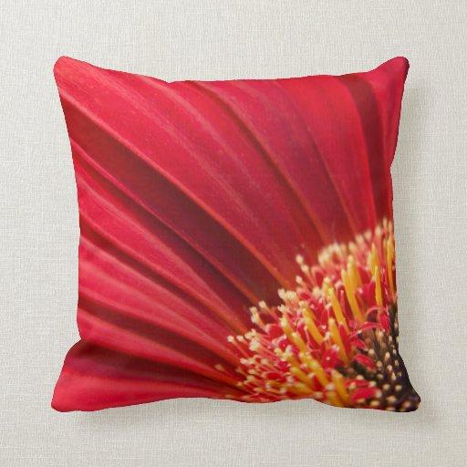 Red Macro Gerbera Daisy Flower Throw Pillows