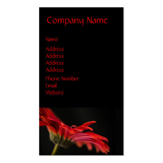 Red Macro Gerbera Flower Double-Sided Standard Business Cards (Pack Of 100)