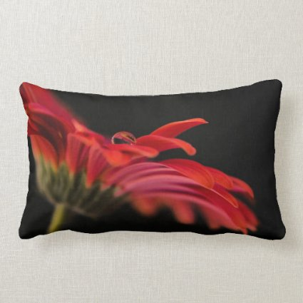 Red Macro Gerbera Flower Pillow
