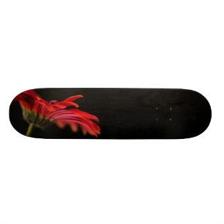 Red Macro Gerbera Flower Skateboards