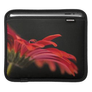 Red Macro Gerbera Flower Sleeve For iPads
