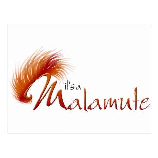 Red Malamute Postcard