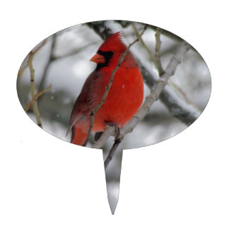 Red male cardinal in the winter cake topper