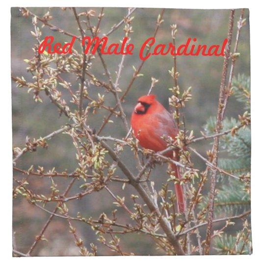 Red Male Cardinal on Hedges Cloth Napkins Set of 4