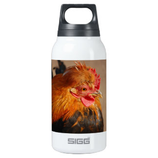 Red-male-chicken1858 ROOSTER FARM ANIMAL BIRD PHOT Insulated Water Bottle