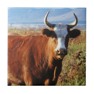 Red Mama Cow in Wildflowers Ceramic Tile
