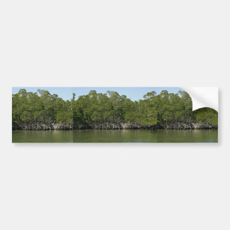 Red mangrove trees at water edge car bumper sticker