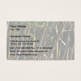 Red mangrove trees business card