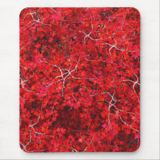 Red Maple and Walnut Mouse Pad
