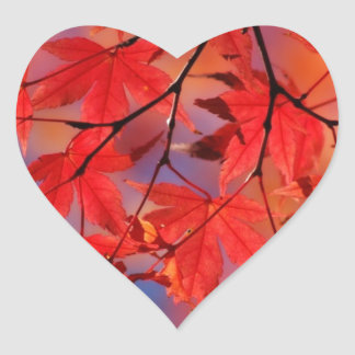 Red Maple Autumn Leaves Heart Sticker