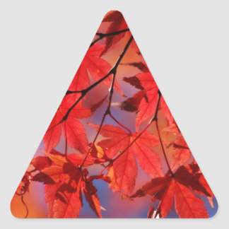 Red Maple Autumn Leaves Triangle Sticker