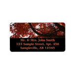 Red Maple Branches Autumn Colorful Label