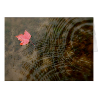 Red Maple Floating Greeting Card