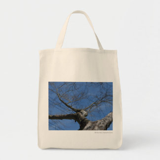 Red Maple, gone Tote Bag