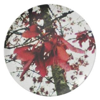Red Maple Keys Botanical Natural Melamine Plate